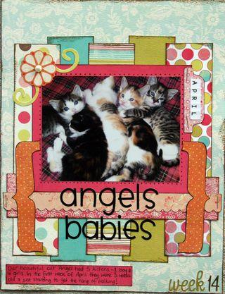 Angles babies week 14